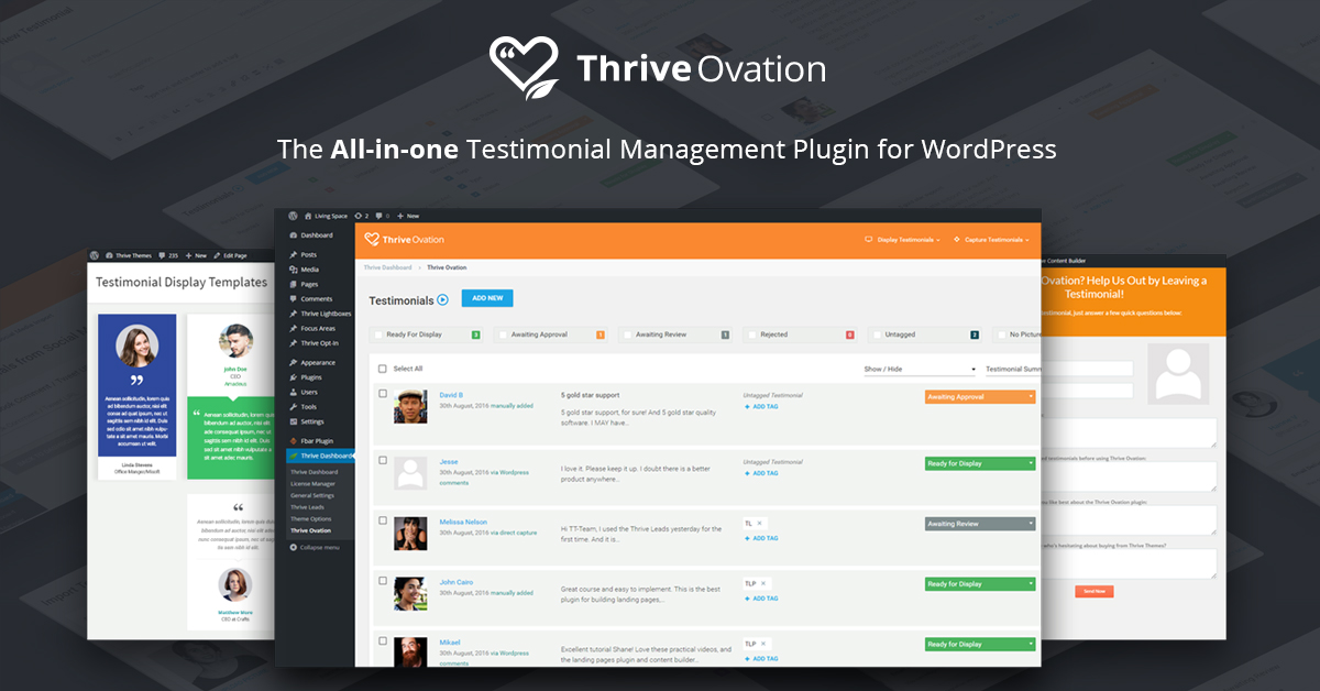 Measurements Of Thrive Themes  WordPress Themes